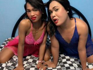 Sexet profilfoto af model AsianSwallowingCumEachOther, til meget hot live show webcam!